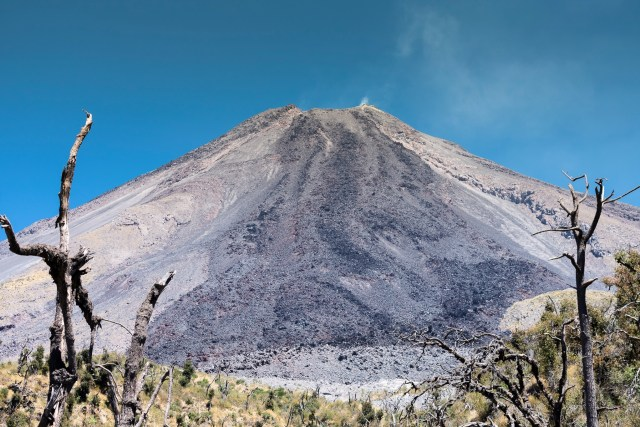 The view of a degassing Volcán de Colima from Montegrande (C) Jack Anderson