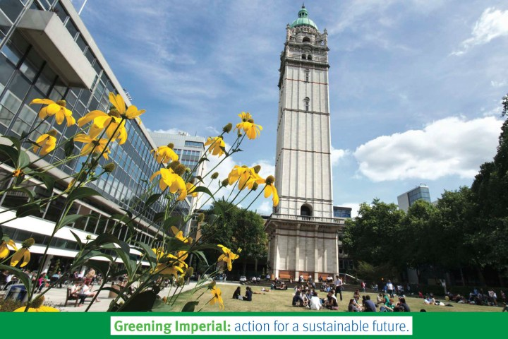 A picture of the Queen's Tower with flowers in the foreground, with the Greening Imperial tagline as a footer