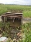 irrigation project 2