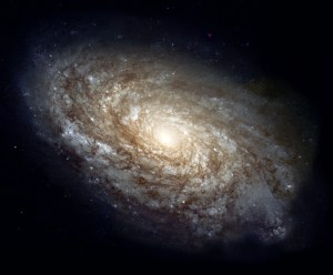 In 1995, the majestic spiral galaxy NGC 4414 was imaged by the Hubble Space Telescope as part of the HST Key Project on the Extragalactic Distance Scale. An international team of astronomers, led by Dr. Wendy Freedman of the Observatories of the Carnegie Institution of Washington, observed this galaxy on 13 different occasions over the course of two months. Images were obtained with Hubble's Wide Field Planetary Camera 2 (WFPC2) through three different color filters. Based on their discovery and careful brightness measurements of variable stars in NGC 4414, the Key Project astronomers were able to make an accurate determination of the distance to the galaxy. The resulting distance to NGC 4414, 19.1 megaparsecs or about 60 million light-years, along with similarly determined distances to other nearby galaxies, contributes to astronomers' overall knowledge of the rate of expansion of the universe. In 1999, the Hubble Heritage Team revisited NGC 4414 and completed its portrait by observing the other half with the same filters as were used in 1995. The end result is a stunning full-color look at the entire dusty spiral galaxy. The new Hubble picture shows that the central regions of this galaxy, as is typical of most spirals, contain primarily older, yellow and red stars. The outer spiral arms are considerably bluer due to ongoing formation of young, blue stars, the brightest of which can be seen individually at the high resolution provided by the Hubble camera. The arms are also very rich in clouds of interstellar dust, seen as dark patches and streaks silhouetted against the starlight.