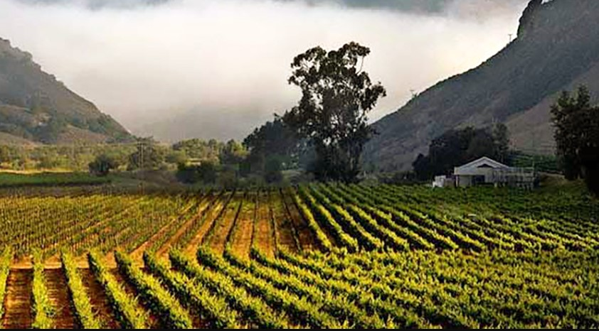 Verdad & Lindquist Family Wines