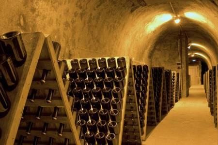 Champagne Holidays- Credits OTAR - Carmen Moya (1)