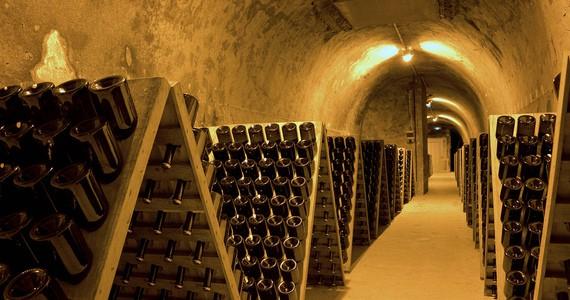 Champagne the wines- Credits OTAR - Carmen Moya
