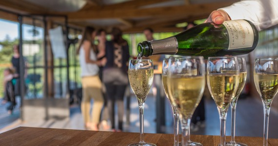Champagne Tours - Tastings