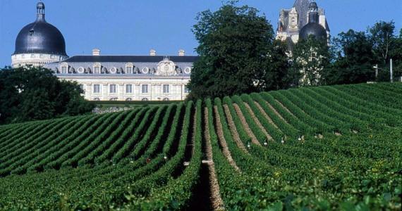 Sancerre Wine Tour