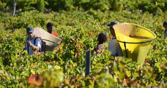 Minervois Wine Tour - Credits Chateau de Cabezac