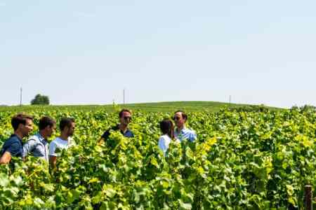 Epernay vineyard tour - Credits Vine Escape