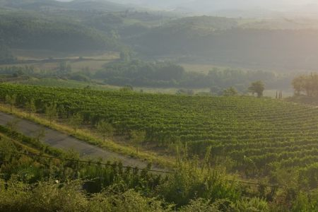 Tuscany Wine Holiday- Credits Fontanelle