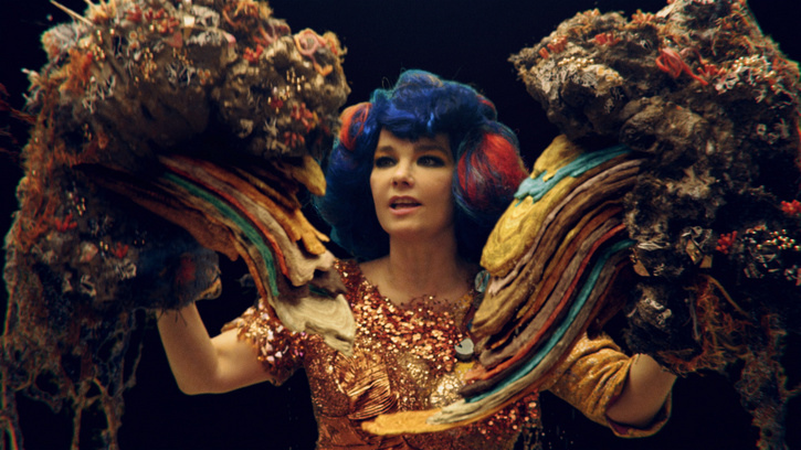 Björk's Educational Programme Added To Nordic Curriculums