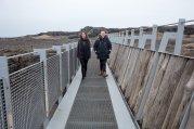 Midlina - the bridge between continental plates