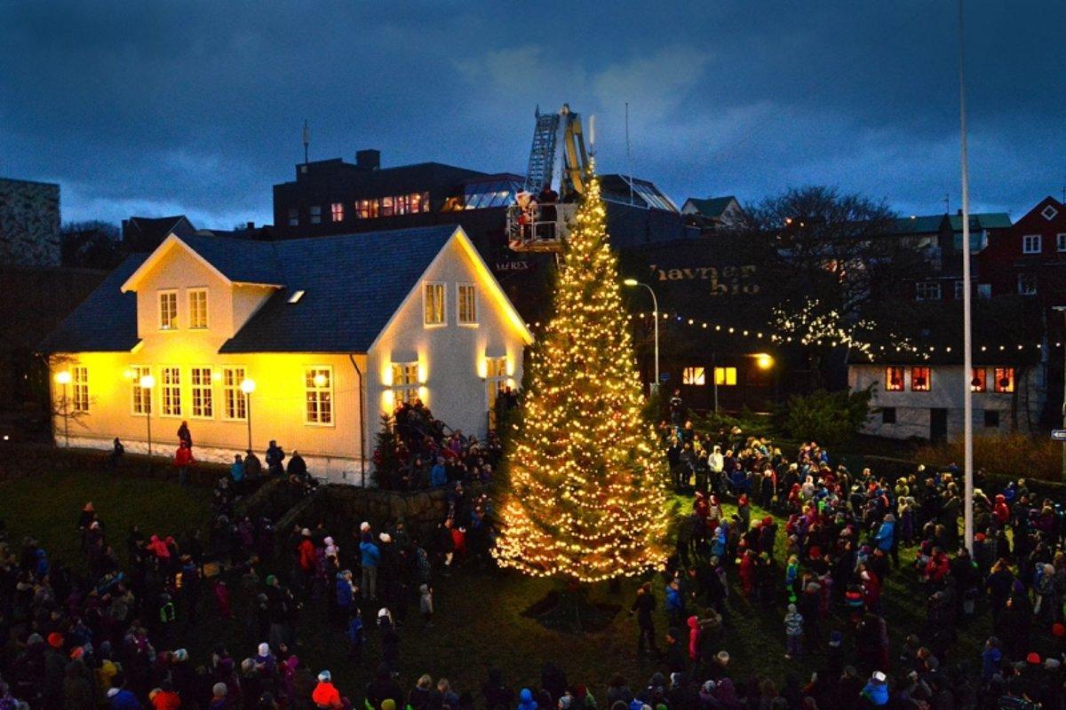 Iceland To Donate Christmas Trees To Faeroe Islands And Greenland ...
