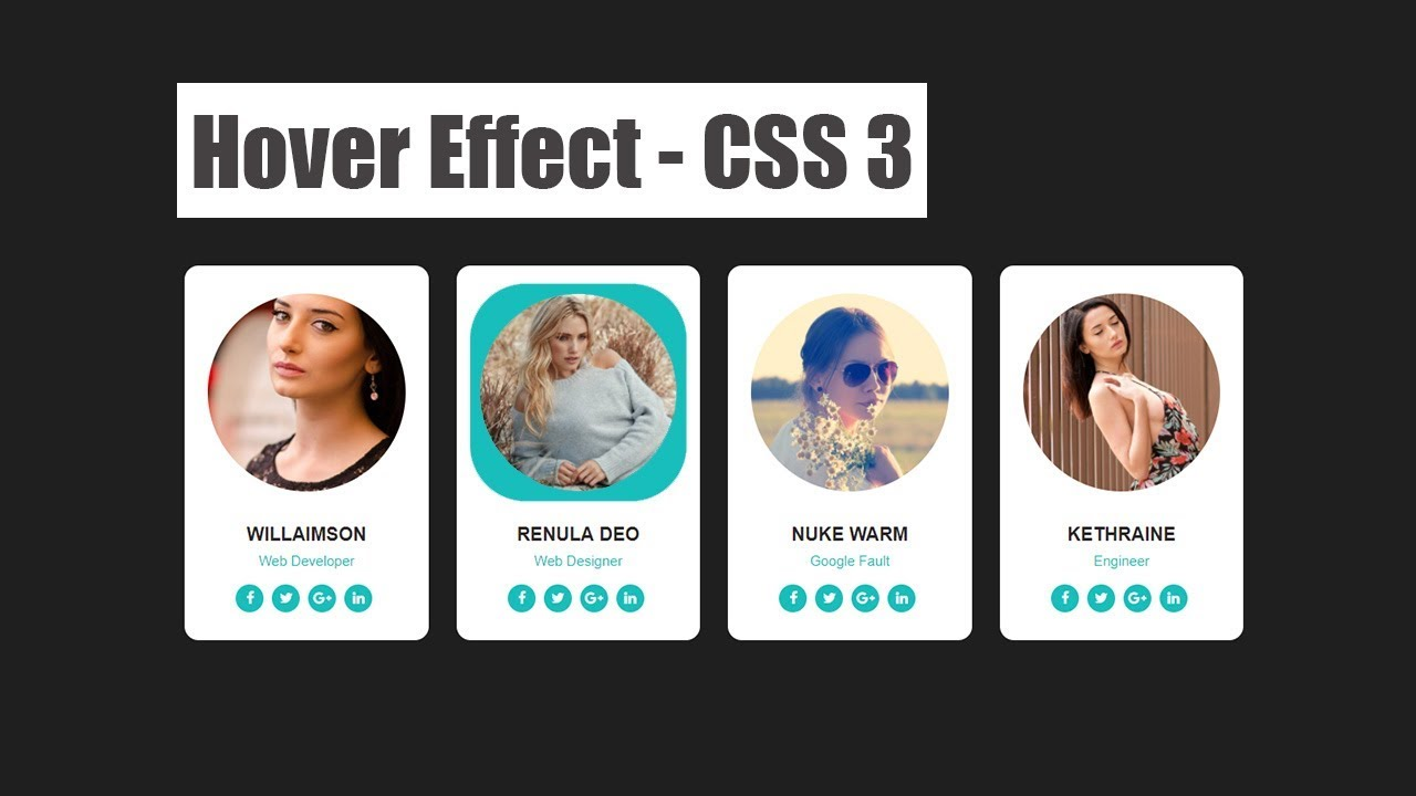 Hover on Image for our team section – website design || css