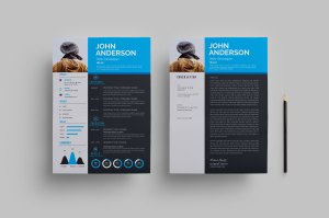 Sleek Resume Design