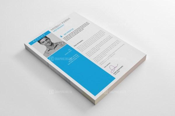Pro Resume CV Templates