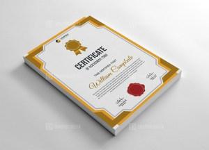 Creative Portrait Certificate Template