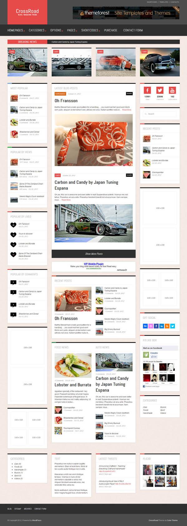 Top Premium News and Magazine Responsive WordPress Themes - 8