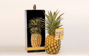 Package Design for Pineapple Carrier and Website