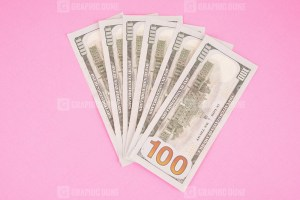 Six Hundred Dollars Isolated on Pink