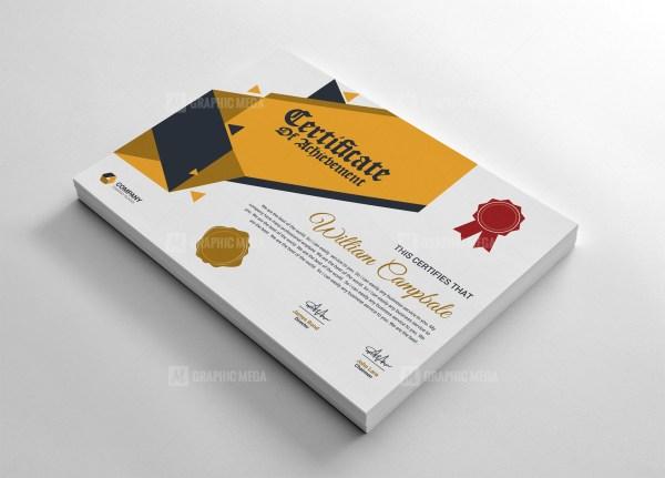 Professional Achievement Certificate