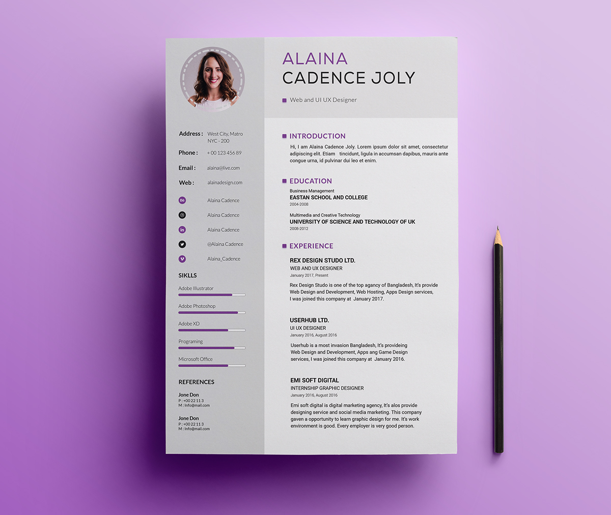 Professional Resume Templates Free: 75 Best Free Resume Templates Of 2019