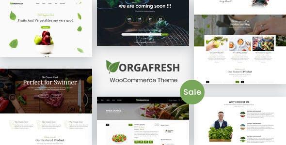 13 - Orgafresh - Organic & Food WooCommerce WordPress Theme