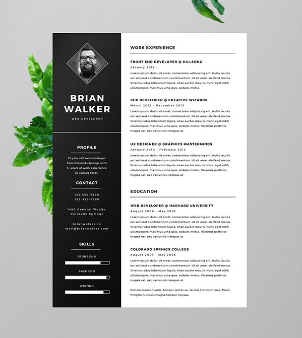 2 - Free Resume for Word, Photoshop & Illustrator