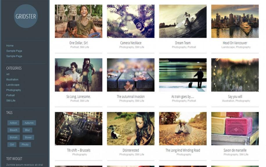 48 - Gridster Lite Free Portfolio WordPress Theme
