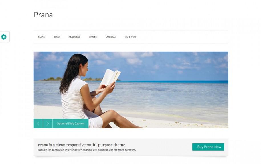 51 - Prana Free Portfolio WordPress Theme