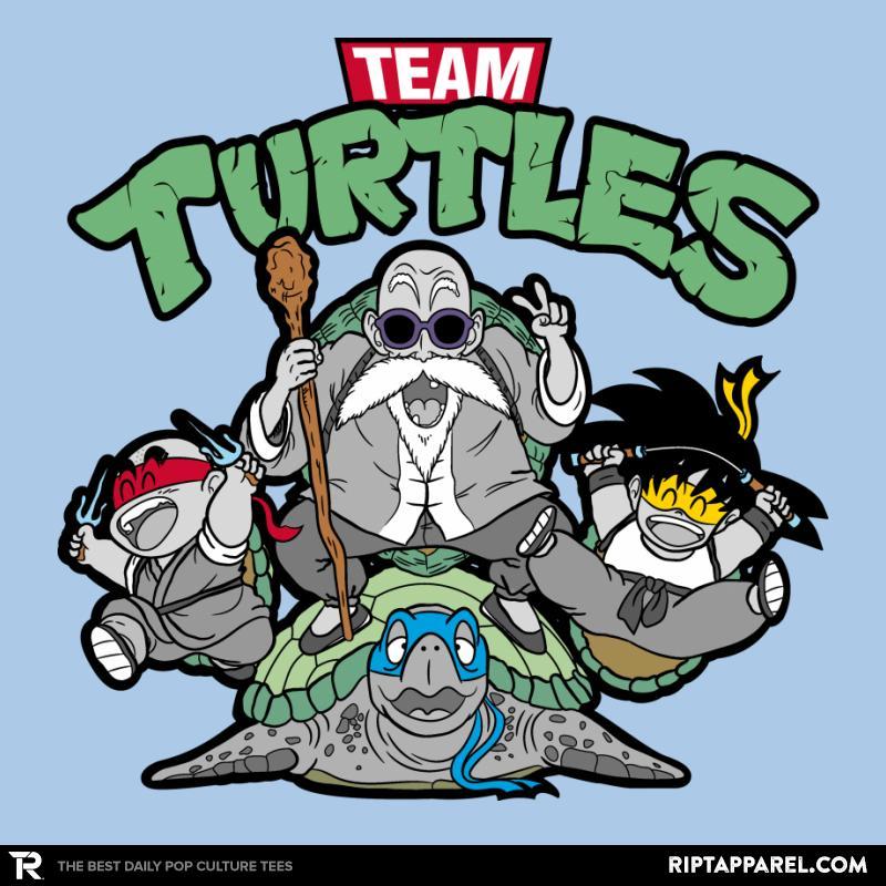 Team Turtles