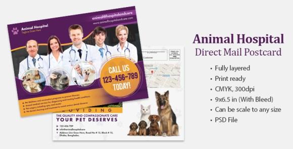 Animal healthcare Postcard sample