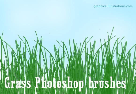 Download Free Photoshop Brush - Grass