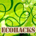 Ecohacks Entrecard Design