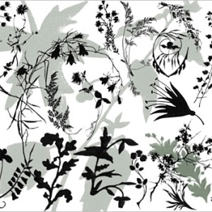 Free download Photoshop plants brushes