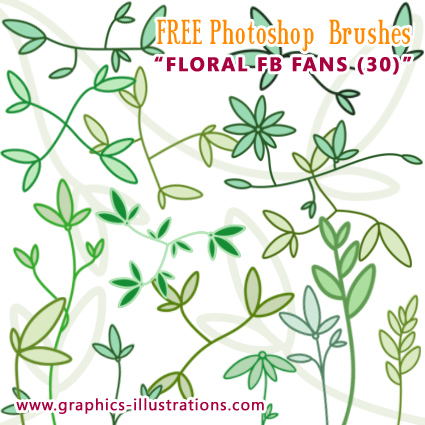 Floral FB fans Photoshop brushes set - FREE