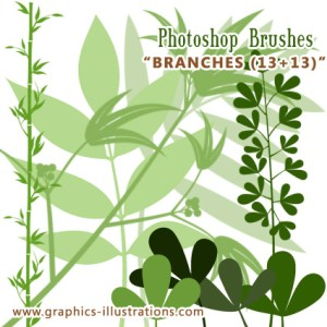 New Free Photoshop brushes set – Branches
