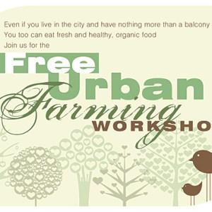 Grow Your Own Food – Workshop Flyer Design