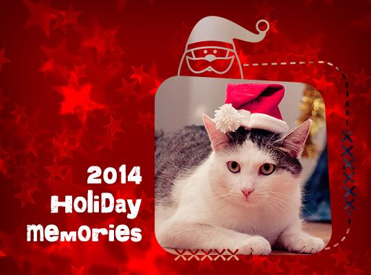 Happy Holidays (photomasks) Photoshop Brushes Set