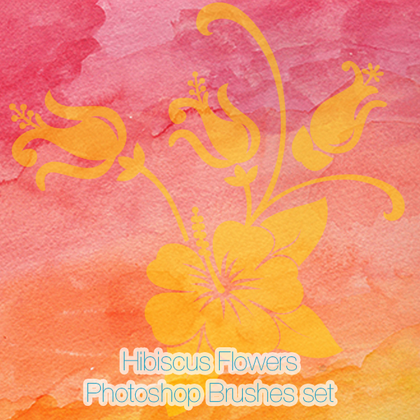 Hibiscus Flowers Photoshop Brushes and PNGs