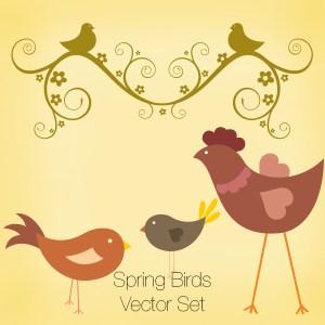 Spring Brids Vector Set