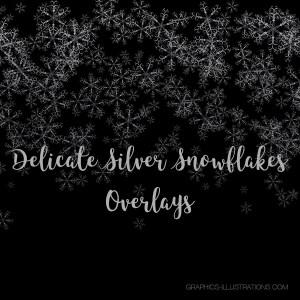 Silver Snowflakes Confetti Overlays