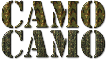 Camouflage Your Text With Bitmap Patterns