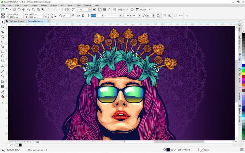 CorelDRAW Graphics Suite 2020 for Windows