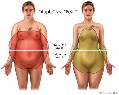 Image result for Apple shape pear shape obesity