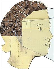 Gilligan, Care Ethics, Kyra, Philosophy