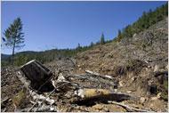 Bushs Stewardship of Public Lands