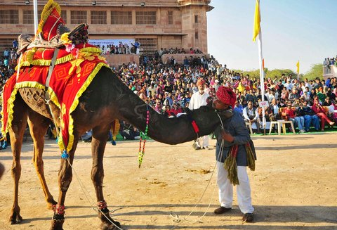 A performance during the Camel Festival in Bikaner, Rajasthan.