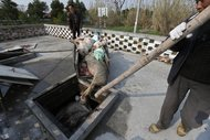 Dead pigs are put into a pit in Zhulin village near Jiaxing in Zhejiang province. Workers removing the dead animals, left by breeders on roadsides, said they are carrying away more than 200 pigs a day.
