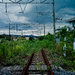 An abandoned train line in Namie, a town that was evacuated because of contamination from the Fukushima Daiichi nuclear plant.