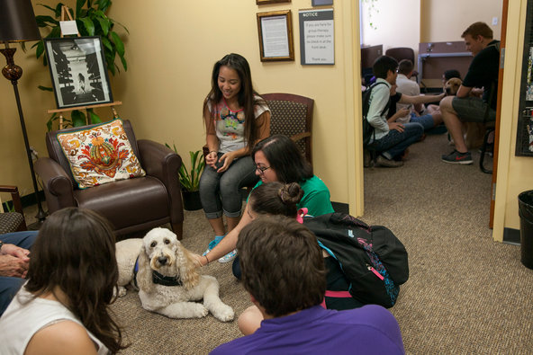 Students gathered around a therapy dog during an event at U.C.F.