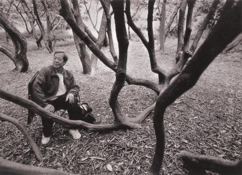 Sun Yang, Seattle, 1994.